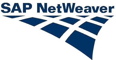 sap netweaver SSO